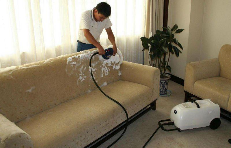 Как почистить диван и ковер в домашних